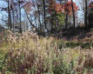 Lot 32 Mountain Ash Way, Sevierville image