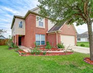 1230 Piedmont Creek Trail, Houston image