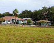 15932 Old Mill Pond Road, Dade City image