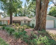 2227 Dogwood Circle, Mount Dora image