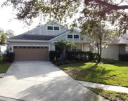 6128 Gannetwood Place, Lithia image
