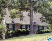 135 Fox Hill Ct, Birmingham image