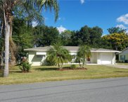 182 N Sunset Drive, Mount Dora image