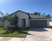 4214 Salt Springs Lane, Lakeland image