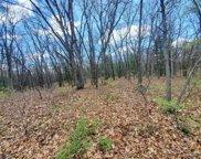 Oak, Cedar Creek Twp image