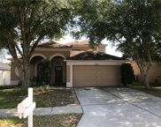 10421 Goldenbrook Way, Tampa image