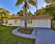 3223 Umbrella Tree Drive, Edgewater image