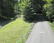 Forest Run, Barkers Creek image