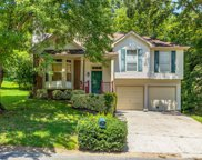 413 Black Mountain Dr, Antioch image