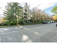 5556 14 Avenue Unit 105, Delta image