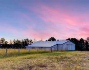 3635 County Road 106, Elizabeth image