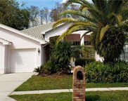 1218 Berkshire Lane, Tarpon Springs image