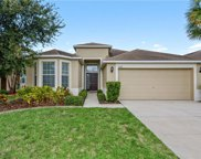 7502 Forest Mere Drive, Riverview image
