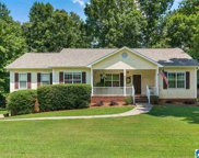 114 Wolf Drive, Odenville image