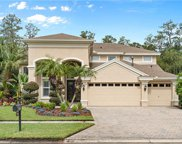 27505 Pine Point Drive, Wesley Chapel image