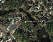 30 Sandy Pine Ct., Pawleys Island image