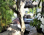 4205 Pine Island Rd Nw, Cape Coral image