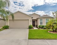 2612 Star Coral Lane, New Smyrna Beach image