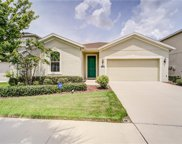 11240 Spring Point Circle, Riverview image