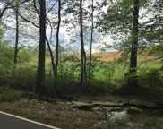 Rogues Fork Rd, Bethpage image