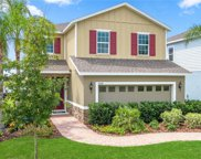 17533 Butterfly Pea Lane, Clermont image