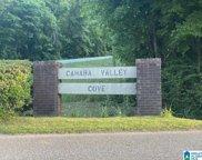 5312 Cahaba Valley Cove Unit --, Birmingham image