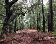 Chisolm Road, Johns Island image