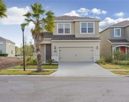 11155 Abaco Island Avenue, Riverview image