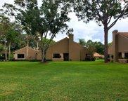 3196 Jademoor Circle, Palm Harbor image