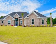 1009 Dowitcher Dr., Conway image