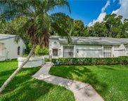 3450 Killdeer Place, Palm Harbor image