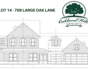 709 Large Oak Lane, Winter Garden image