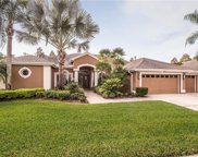 12129 Clear Harbor Drive, Tampa image
