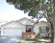 1125  Shearwater, Patterson image
