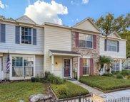 13927 Fletchers Mill Drive, Tampa image