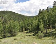 460 Brown Bear Drive, Cripple Creek image