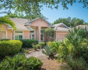 167 Willow Bend Way, Osprey image