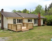 3133 Co Rd 29, Oneonta image