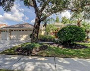 10607 Rochester Way, Tampa image