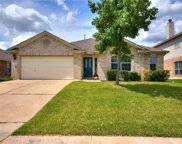 18412 Dry Brook Loop, Pflugerville image
