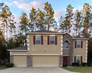 278 SW MULBERRY DR, Lake City image