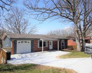 403 Persimmon, Arnold image