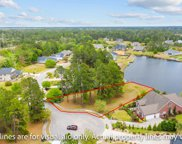 1033 Muscovy Pl., Conway image