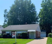 11235 W Clements Cir, Livonia image