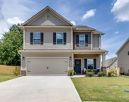 5 Chestnut Grove Lane, Simpsonville image