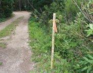 1510 Lump Gulch Road, Black Hawk image
