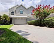 13604 Eagles Walk Drive, Clearwater image