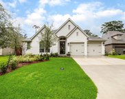 423 Callery Pear Court, Conroe image