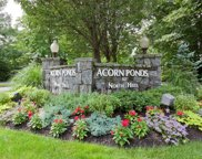 19 Spring Hollow, Roslyn image