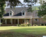 106 Rich Drive, Gurley image